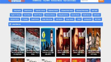 Photo of DownloadHub 2020– Download 300MB Bollywood, Hollywood Movie