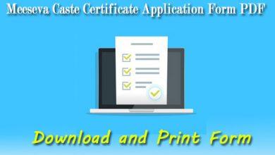 Photo of Meeseva Caste Certificate Application Form PDF